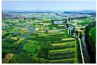 河海大学MBA | 2021年江苏省乡村振兴案例大赛校园选拔赛通知