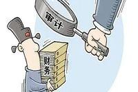 华政MPAcc导师风采|陈秧秧副教授以专家辅助人参与证券虚假陈述责任纠纷案件审理